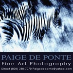 20130604165856-paige_ad_for_art_basel