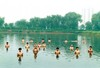20100906223806-zhang-huan
