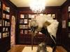 20121228091459-straylightgray