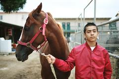 20141218190226-20141216204501-horse_and_gauge_portrait
