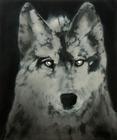 20110903063849-_wolf__60_x_50_cm