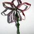 Flowerpins72ppi14