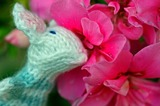 20110910214908-mousy_lady_smelling_pink_flowers