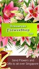 20130701044805-singaporeflowershop_m