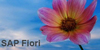 20160827104828-sap-fiori
