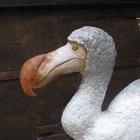 20110330191007-dodo