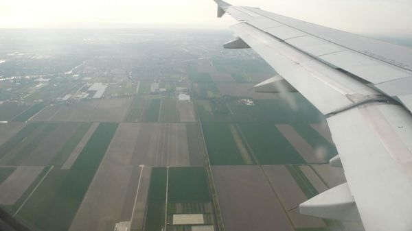 Flying back to the Netherlands.
