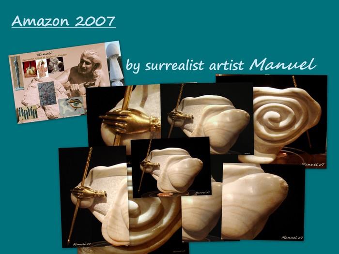 Amazon 2007