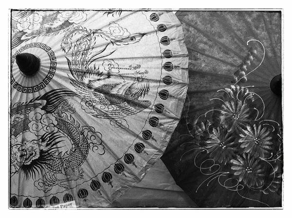 "Kim Hirsch ""Paper Umbrellas"""