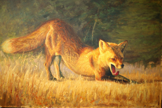 Downward Dog, Dan McCarthy