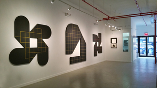 WESTWOOD GALLERY NYC, Will Insley Installation View