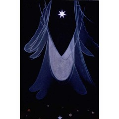 The Guide, Agnes Pelton