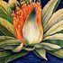 _bali_lotus_flower_i___antonio_rael__2007