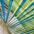 Bluelines-inner-green-400w