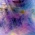 Bluebird_is_happiness