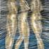 Las_tres_gracias_que_el_tiempo_se__llevo___2_-_lithocoal_and_chalk_pastel_on_paper-__34_x_26_inches