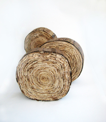 10__quercus_condido_pt_i_-_iii___back_view__-_fruit_box_wood___pva_wood_glue___dark_oak_varnish_-_dimensions_variable_-_2009