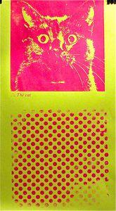 20111114191559-missing_cat