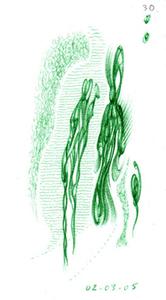 Pasternak_02_03_05grn_weblg
