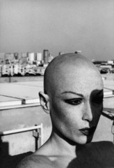 La Dame au Crane Rasée, Manon
