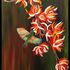 20110118111112-wild_flowers
