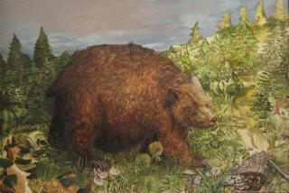 Bear, Jenn Wilson