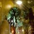 May_2009_zeitz_image