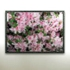 Grid_flower_triptych