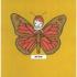 Butterfly_boy