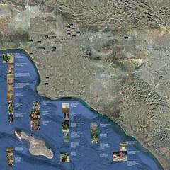 Southern California Tree Baby Map, Joel Tauber