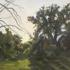 Radiant_ridge___sunset_in_serrania_park_