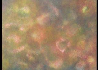 Twilight Blossoms, Katherine Hisako Kodama