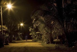 Night Prowl Phantom, Boyarde Messenger