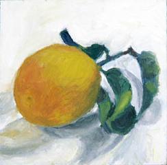 Lemon, Steve Metzger