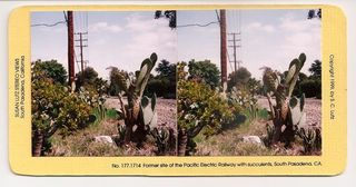 Former site of the Pacific Electric Railway with succulents, South Pasadena, CA, Susan Lutz