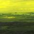 Green4sm