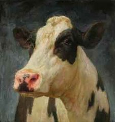 Cow,Karel Buskes