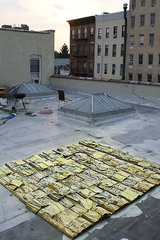 Yellow Pages Installation, Gunter Puller