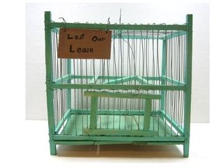 Bird Cage, Alejandro Diaz
