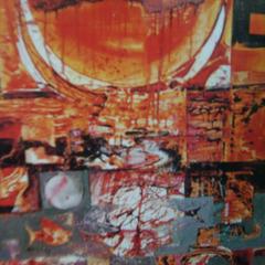 Sun___fish_-_65x65_-_oil_on_painting