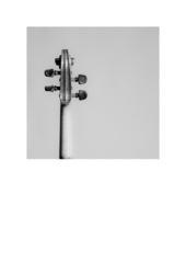Geige20090427001
