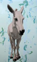 Donkey07_5