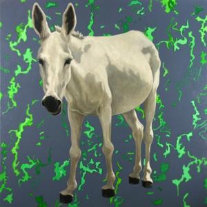 Donkey07_7web2