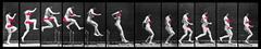 Muybridge_jumping_copy