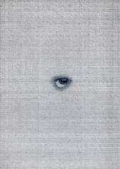 Apocalypse Eye, Johan De Wilde