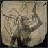 Gethsemane_merfeld__flazh-2