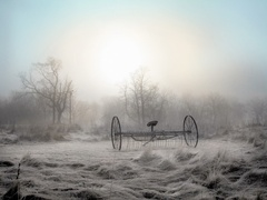 Robert_mcginley_-_farm_rake_fog_27_x_36in