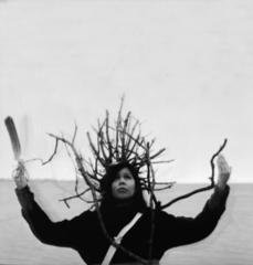 Tree, Shelley Niro