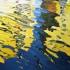 Burano_-_reflections_i