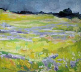 Kite Hill, Sarah Beth Goncarova